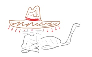 It's a cat. Wearing a sombrero.
