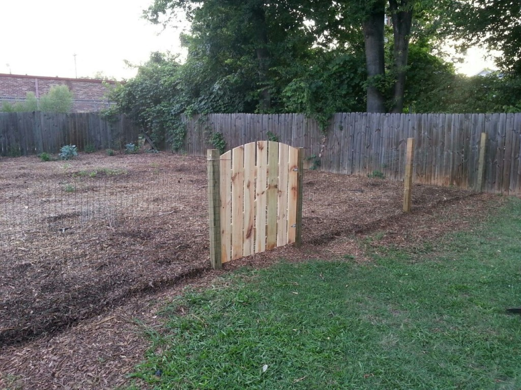 I never know how to end blogs, so here's a picture of the fence Palmer built to keep the chickens out of the garden area in the backyard.